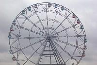 В Туле открылось самое высокое колесо обозрения в городе, Фото: 51