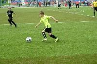 День массового футбола в Туле, Фото: 48