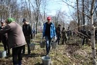 Посадка деревьев в Комсомольском парке, Фото: 39