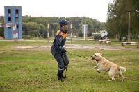 Испытания кинологов в Тульском спасательном центре, Фото: 59