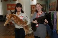 Выставка кошек. 21.12.2014, Фото: 4