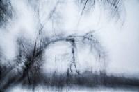 Темная сторона Платоновского парка, Фото: 23