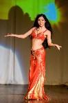 В Туле показали шоу восточных танцев, Фото: 88