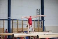 Соревнования по спортивной гимнастике на призы Заслуженных мастеров спорта , Фото: 71