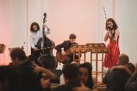 Как в Туле прошел уникальный оркестровый фестиваль аргентинского танго Mucho más, Фото: 53