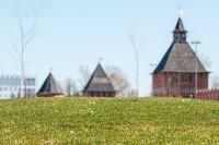 Крокусы в Туле , Фото: 31