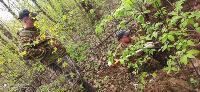 В Тульской области обнаружено еще одно братское захоронение советских воинов времен ВОВ, Фото: 22