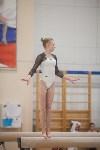 Первенство ЦФО по спортивной гимнастике, Фото: 165