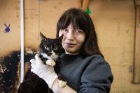 Волонтеры спасли кошек из адской квартиры, Фото: 81