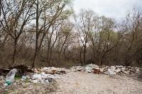 В Туле на берегу Тулицы обнаружен незаконный мусорный полигон, Фото: 21
