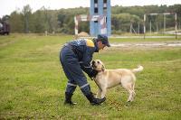 Испытания кинологов в Тульском спасательном центре, Фото: 58