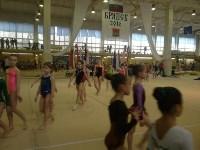 Туляки на соревнованиях по спортивной гимнастике в Брянске., Фото: 4