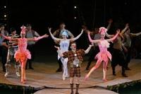 В Тульском цирке прошла премьера аква-шоу, Фото: 67