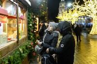 В Туле завершились новогодние гуляния, Фото: 51