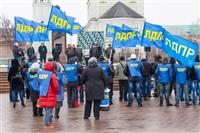 Митинг ЛДПР. 23 февраля 2014, Фото: 12