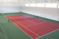 Открытие спортивного зала и теннисного центра в Новомосковске, Фото: 1