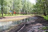 Жерздев инспектирует благоустройство Взрослого и Детского парка, Фото: 3