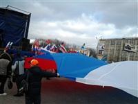В Туле проходит митинг в поддержку Крыма, Фото: 1