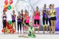 Художественная гимнастика. «Осенний вальс-2015»., Фото: 116