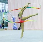 Кубок общества «Авангард» по художественной гимнастики, Фото: 13