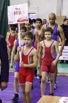 Турнир по греко-римской борьбе на призы Шамиля Хисамутдинова, Фото: 57