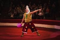 «Шоу Слонов» в Тульском цирке, Фото: 8