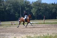 В Ясной поляне стартовал турнир по конному спорту, Фото: 52