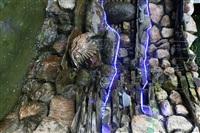 Домик в Плавске, Фото: 3