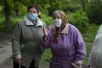 В Тульской области Богородицкий район атаковали мошки, Фото: 6