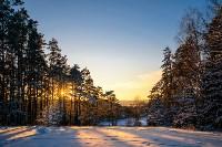 Снежное Поленово, Фото: 62