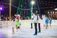 Туляки отметили Старый Новый год ледовым шоу, Фото: 15