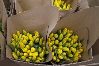 Тюльпаны , Фото: 14