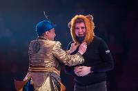 Шоу фонтанов «13 месяцев»: успей увидеть уникальную программу в Тульском цирке, Фото: 32