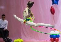 Соревнования по художественной гимнастике 31 марта-1 апреля 2016 года, Фото: 91