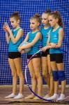 Соревнования по художественной гимнастике 31 марта-1 апреля 2016 года, Фото: 131