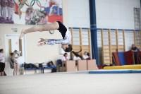 Соревнования по спортивной гимнастике на призы Заслуженных мастеров спорта , Фото: 39