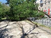 Упавшее дерево перекрыло ул. Болдина, Фото: 9