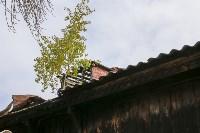130-летний дом в Алексине, Фото: 13