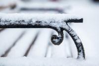Тула после снегопада. 23.12.2014, Фото: 46