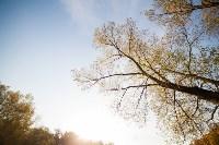 Золотая осень в Тульской области, Фото: 58