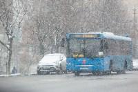 Мартовский снег в Туле, Фото: 41