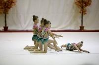 """Соревнования по художественной гимнастике """"Осенний вальс"""", Фото: 60"""