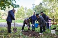 Тульская городская УК сажает деревья, Фото: 23