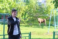 Лось во дворе дома №45 по ул. Плеханова, Фото: 31