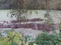 """""""Кровавая"""" вода в пруду в Михалково, Фото: 3"""