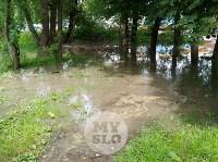 Дворы на Красноармейском проспекте затопило нечистотами, Фото: 11