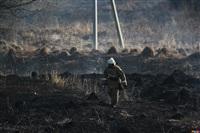 Сразу в нескольких районах Тульской области загорелись поля, Фото: 1