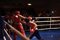 В Туле прошла матчевая встреча звезд кикбоксинга, Фото: 7