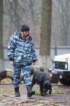 Кто стоит на страже безопасности туляков, Фото: 4
