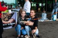 Благотворительный фестиваль помощи животным, Фото: 10